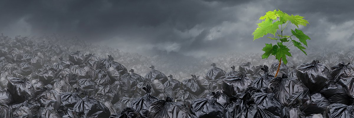 Waste-recycle-adobe.jpg