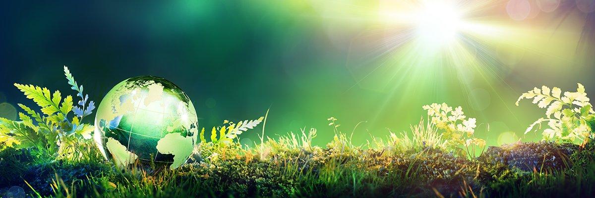 globe-environment-green-eco-fotolia.jpg