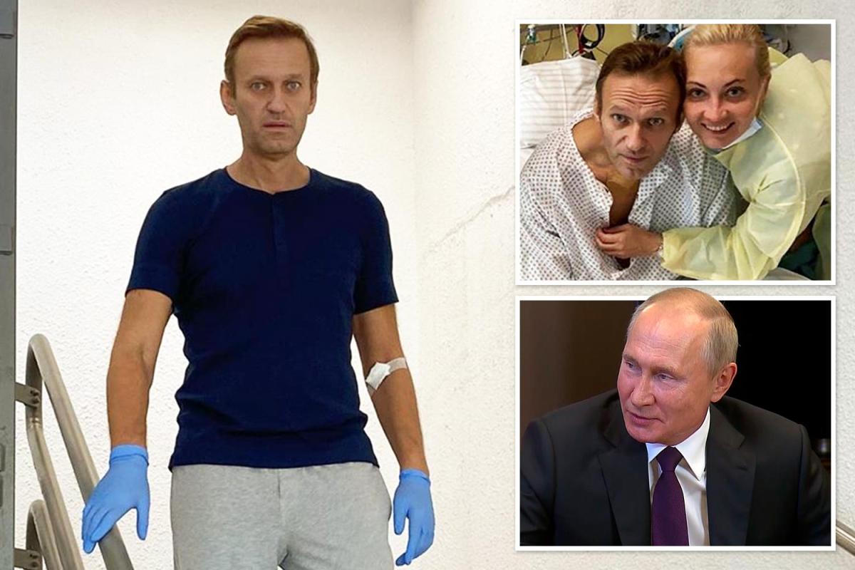 Tm-comp-Navalny.jpgstripallquality100w1200h800crop1.jpeg