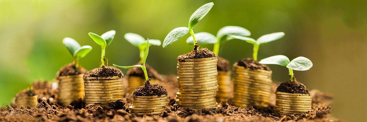 money-growth-fotolia.jpg