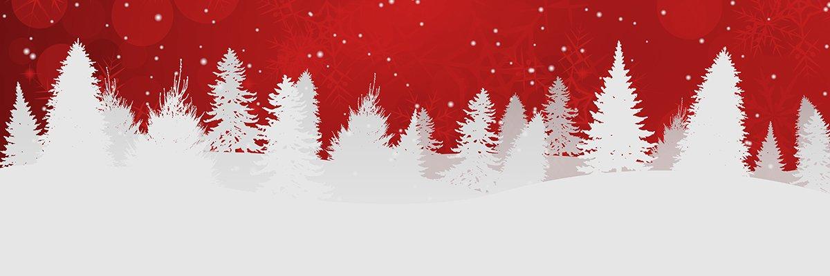 Christmas-winter-trees-Adobe.jpg