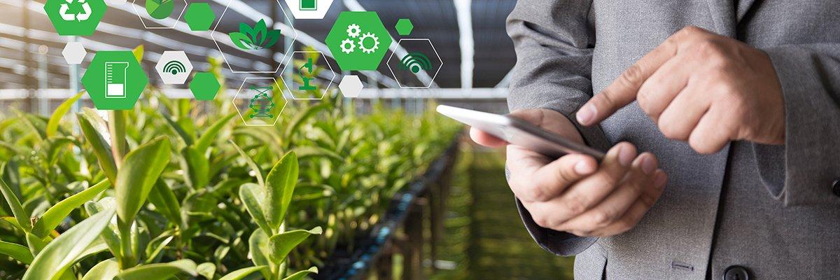 IoT-food-agriculture-adobe.jpg