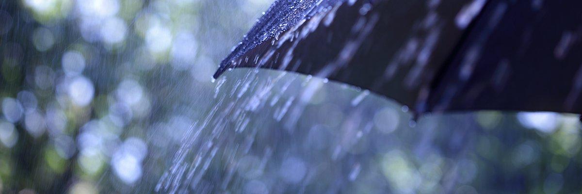 weather-rain-umbrella-adobe.jpeg