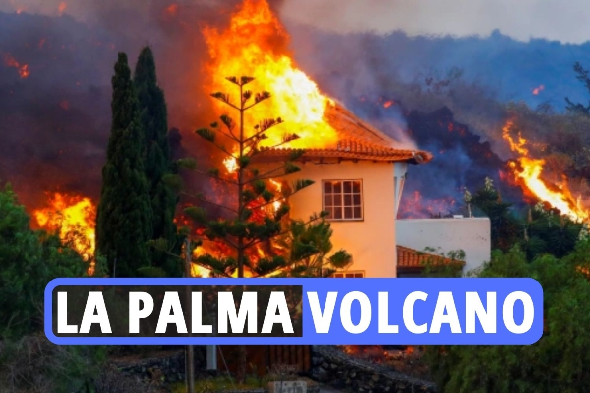 la-palma-teaser-1.jpgstripallquality100w1200h800crop1.jpeg