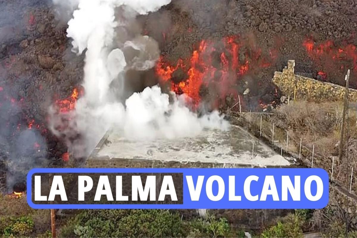 la-palma-teaser-2.jpgstripallquality100w1200h800crop1.jpeg